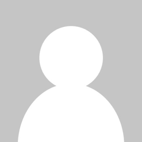 淮城一只猫